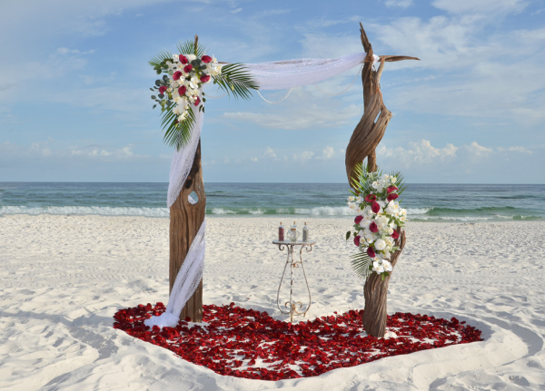 beach wedding, destin, driftwood, arbor, barefoot weddings